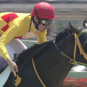 【競馬】セレクト最高価格5億円馬・シーヴ19の馬名を当てるスレ