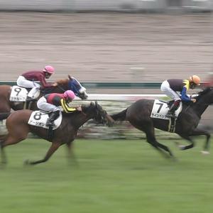 【競馬】ラインベックの1週前追い切りでデムーロが騎乗してる件について