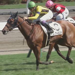 【競馬】グランアレグリア次走はヴィクトリアマイル