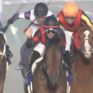 【競馬】帝王賞ルヴァンスレーヴの鞍上レーンwwwwwwww