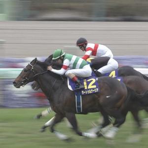 【競馬】サートゥルナーリア電撃引退、種牡馬として社台SSでスタッドイン