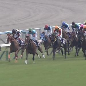 【競馬】名古屋競馬場の厩舎から馬が集団脱走 既にマスコミも動いている模様