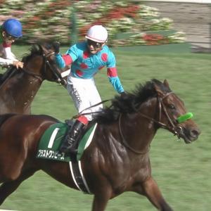 【競馬】ブラストワンピースとサートゥルナーリアに一言どうぞ