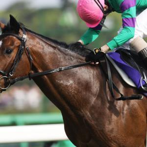 【競馬】マカヒキ世代の皐月賞馬と菊花賞馬が思い出せない