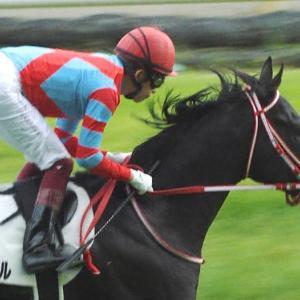 【競馬】無敗の3冠馬と言っても世間の盛り上がりがスルーな件