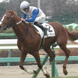 【競馬・京成杯】ルメールのために直線インコースを開けたデムーロの騎乗