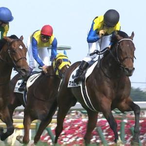 【競馬】マカヒキさん、次走は宝塚記念