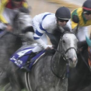 【競馬】池江調教師「高速馬場は馬が壊れやすい。関連性がないなんて言う人の言葉に騙されたらダメです。」