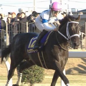 【競馬】帝王賞、今年のGI昇格ならず チュウワウィザードのチャンピオンズCレーティングが118→117に下方修正