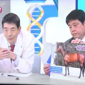 【競馬】岡田総帥「騎手って分かりやすく言うと、時速60キロで走る馬の上でずっとウサギ飛びやってるんです」