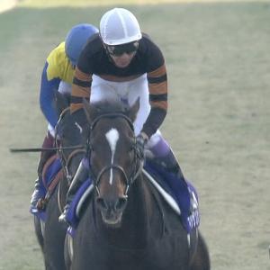 【競馬】キタサンブラック1年目の産駒65頭しかいない