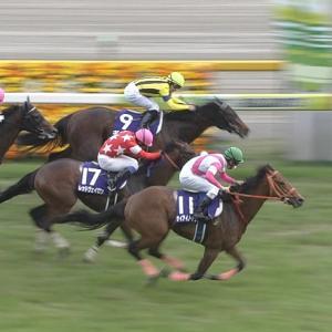 【競馬】ケイアイノーテック オーストラリアへ移籍