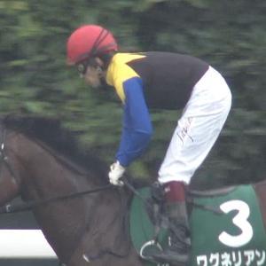【競馬】ワグネリアン 武豊とコンビで京都記念へ