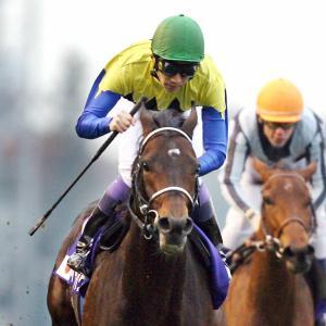 【競馬】G1出走歴のある無名馬