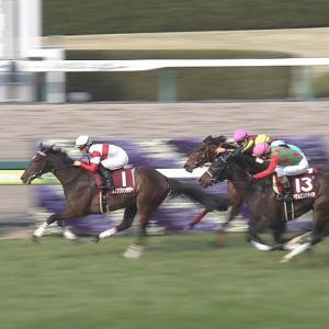 【競馬】弥生賞を改名したのならチューリップ賞も改名へ