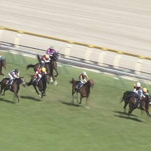 【競馬】種牡馬オルフェ完全終了・・ラキ珍三冠馬確定