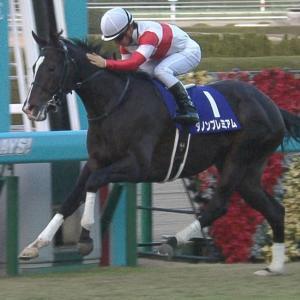 【競馬】ダノプレさん幻のG1数が二桁に上ってしまうwww