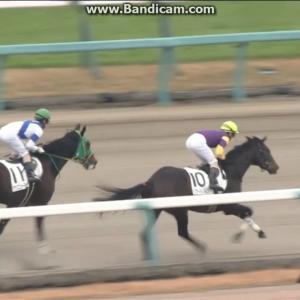 【競馬】ラジオ日経のアナウンサー「すっかりこの勝負服がおなじみになりました山田敬士騎手」