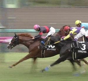 【競馬】ミラアイトーン、ゲート前に意味もなく鞭でしばかれる