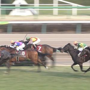 【競馬】朝日杯フューチュリティステークスはトリプルエースが優勝します!