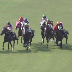 【競馬】2連勝中のセラピアはヴィクトリアマイルへ【芦毛オルフェ産駒】
