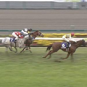 【競馬】速報、ZOZOTOWNの元社長、ついに馬を買う