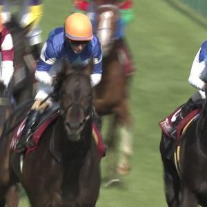 【競馬】アドミラブルさん、ひっそりと引退していた