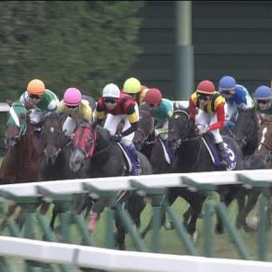 【競馬】ケイアイファーム、6200万円出してプリメラビスタ購入