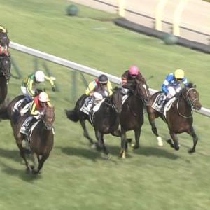 【競馬】戸田博文調教師は、騎手に対し粗暴な行為に及んだことについて過怠金20万円