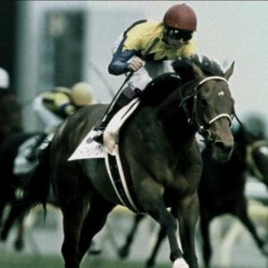 【競馬】悟空=ディープ、ベジータ=オルフェ、だとしてピッコロは?