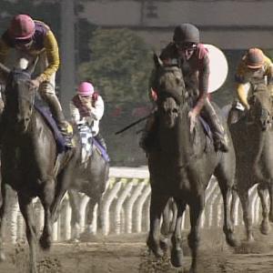 【競馬】浦和JBCクラシック、スプリント、レディスクラシック中央登録馬