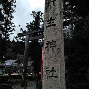 丹生神社の御朱印