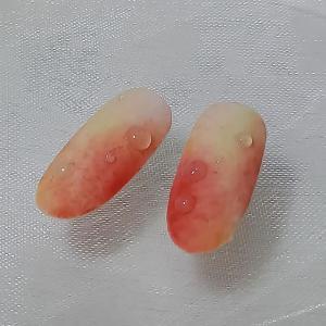 桃のサンプルチップ♪