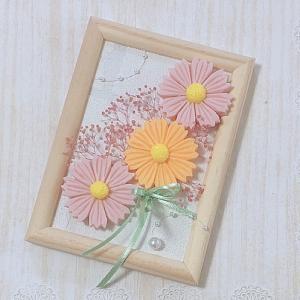 秋のお花 コスモス