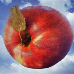 *The apple flew