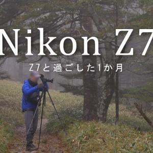 ニコンZ7と過ごした最初の1か月間