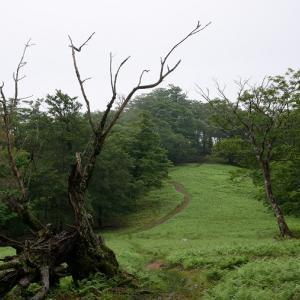 関西おすすめのテント泊コース!明神平~薊岳周回
