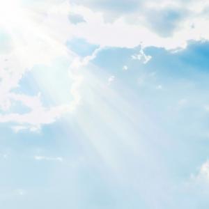スッキリ(11月30日)金曜の天の声ゴールドは?