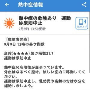 台風15号・・『停電』で暑いです( ´༎ຶㅂ༎ຶ`)