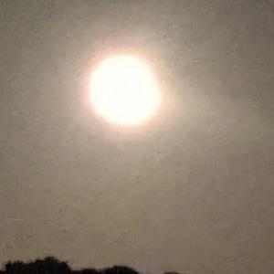 お月さま(*´︶`*)ノ゙☆