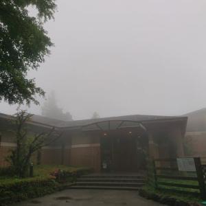 霧深い箱根です