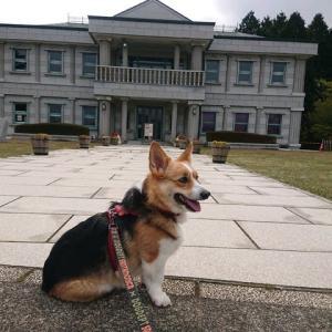 箱根観光情報!(恩賜箱根公園)