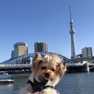 DOG DEPT+CAFE浅草 隅田川テラス店