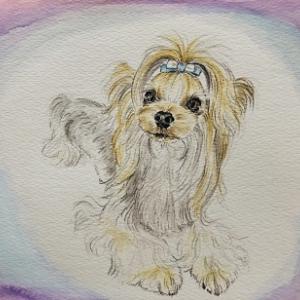 若紫と命名した雪太郎画伯の絵