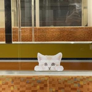 地下鉄車内広告に癒される
