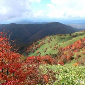 紅い羊と山ランチ