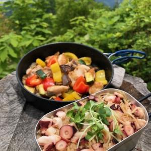 タコ飯と夏野菜炒め