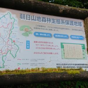 大朝日岳。