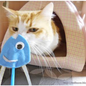 「 柊鰯 」の手作り猫じゃらし♪