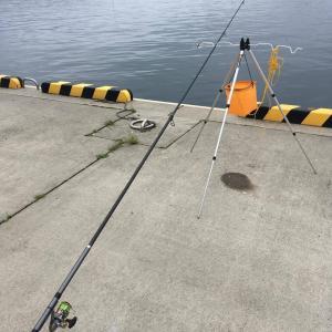 岩手沿岸で海釣り